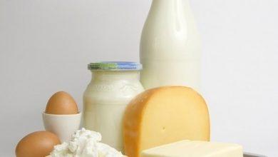 Photo of الحمية المثيرة للجدل بين خبراء التغذية