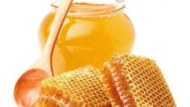 Photo of 7 فوائد لـ«عسل النحل».. اكتشفها