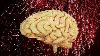 Photo of 5 ممارسات لتحسين عمل الدماغ