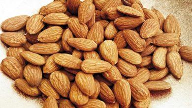 Photo of اللوز يساعد على تخفيض مستوى الكوليسترول